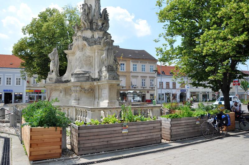 Essbare Stadt – Korneuburg baut an