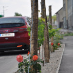 Ortsdurchfahrt Gaweinstal